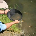 Análise de mercúrio em água